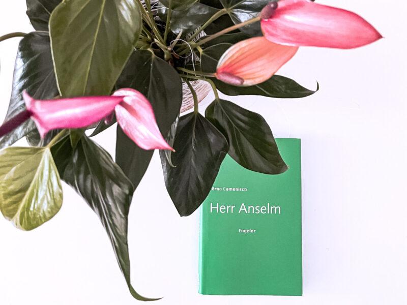 Cover mit Blume dekoriert
